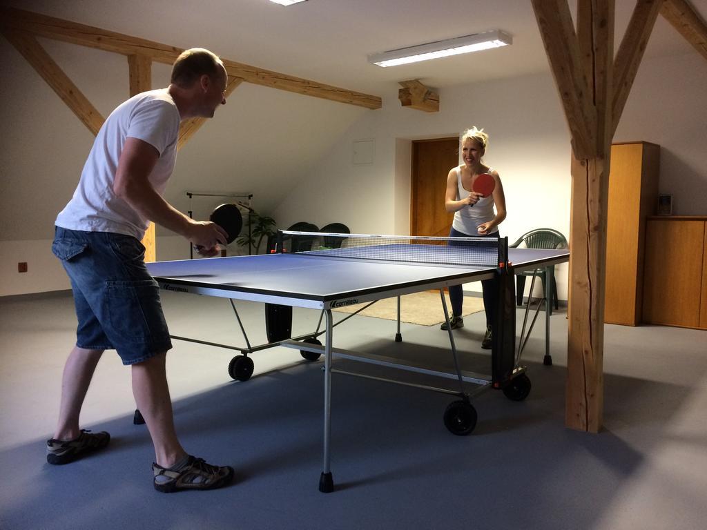 nzion Francouzska ping-pong
